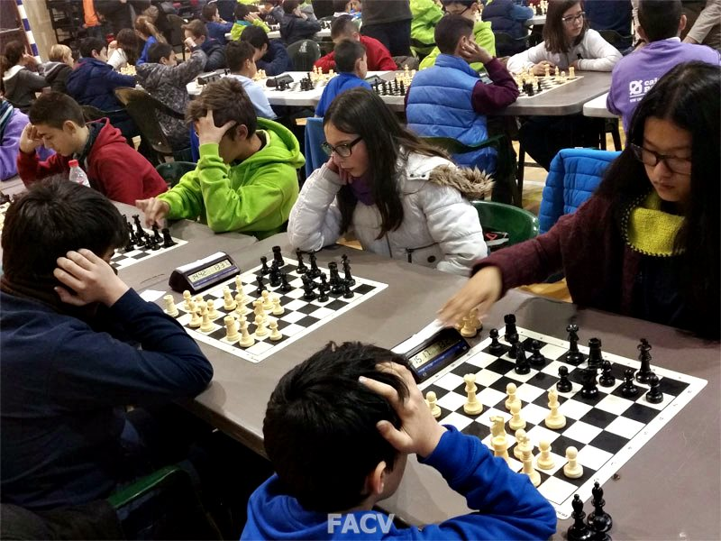 provinciales ajedrez alicante torneo