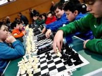 2016-provinciales-ajedrez6