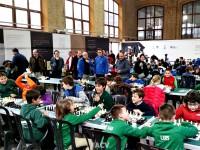 2016-provinciales-ajedrez8