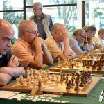 2016-ajedrez-veteranos-l311