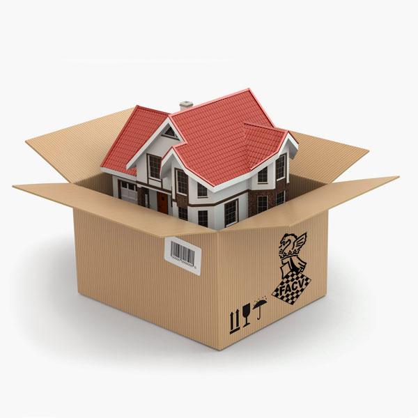 caja de cartón abierta con casa dentro