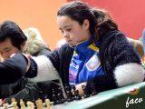 2017-blitz-silla-ajedrez-05