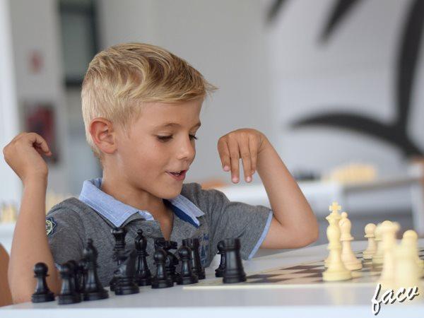 ajedrez ifa alicante