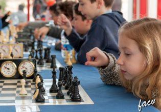 2018-beniganim-ajedrez-w02