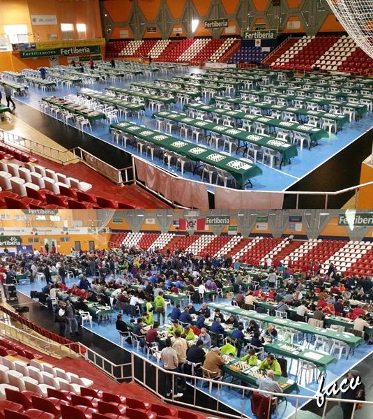 competición por equipos de ajedrez