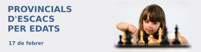 Banner torneo ajedrez Comunidad Valenciana, España
