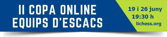 banner torneo online ajedrez